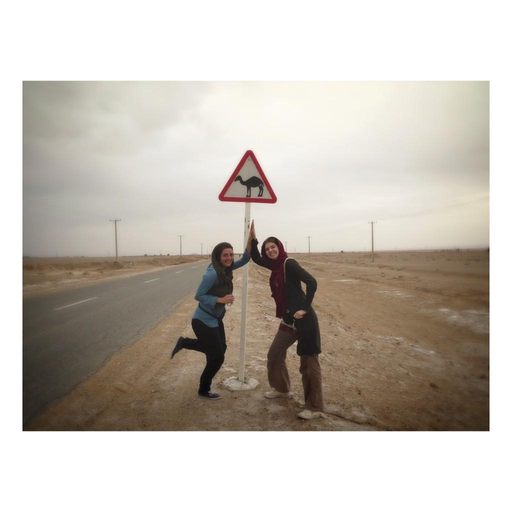 Susanne & Sascha op zoek naar kamelen